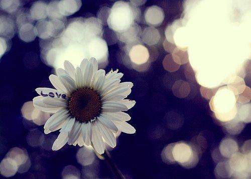 悲痛欲绝的伤感QQ签名:心不再是热的全都是假的只有眼泪是真的_www.aioppo.cn