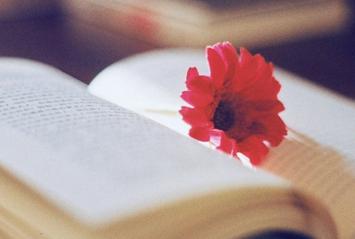 关于恋爱有些伤感的句子签名:我会学着放弃你,是因为我太爱你_www.aioppo.cn