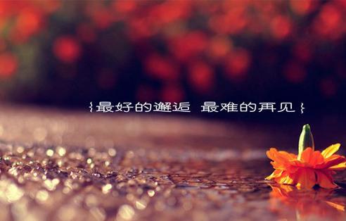 女生失恋qq签名:即使优雅的颓废,也始终掩饰不了内心的伤痛。_www.aioppo.cn